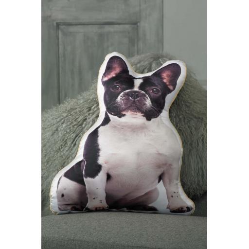 ASC-1012-Black-White-French-Bulldog-lifestyle.jpg