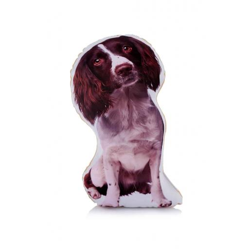 Liver and White Springer Spaniel Midi Cushion Perfect For Dog Lovers